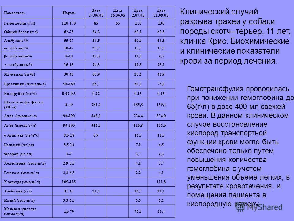 ПоказательНорма Дата 24.06.05 Дата 26.06.05 Дата 2.07.05 Дата 21.09.05 Гемоглобин (г\л)110-1708565110130 Общий белок (г\л)62-7854,369,160,8 Альбумин %55-6739,556,054,5 α-глобулин%10-1223,713,715,9 β-глобулины%8-1010,511,04,5 γ- глобулины%15-1826,319,