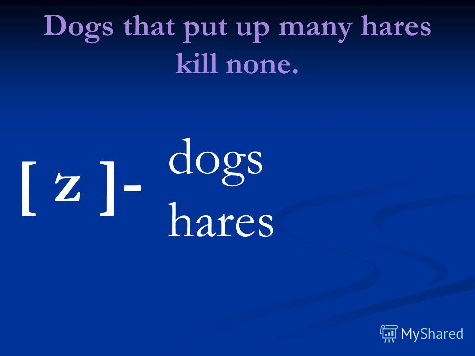 Dogs that put up many hares kill none. [ z ]- dogs hares