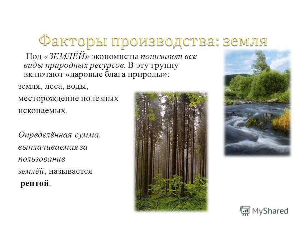 Под «ЗЕМЛЁЙ» экономисты понимают все виды природных ресурсов. В эту группу включают «даровые блага природы»: земля, леса, воды, месторождение полезных ископаемых. Определённая сумма, выплачиваемая за пользование землёй, называется рентой.