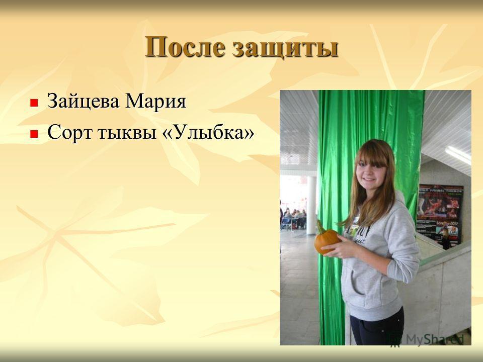 После защиты Зайцева Мария Зайцева Мария Сорт тыквы «Улыбка» Сорт тыквы «Улыбка»
