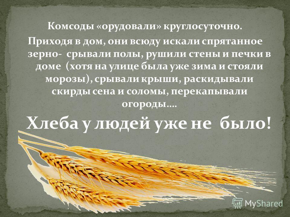 Комсоды «орудовали» круглосуточно. Приходя в дом, они всюду искали спрятанное зерно- срывали полы, рушили стены и печки в доме (хотя на улице была уже зима и стояли морозы), срывали крыши, раскидывали скирды сена и соломы, перекапывали огороды…. Хлеб