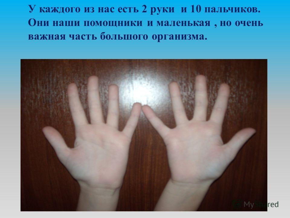 У каждого из нас есть 2 руки и 10 пальчиков. Они наши помощники и маленькая, но очень важная часть большого организма.