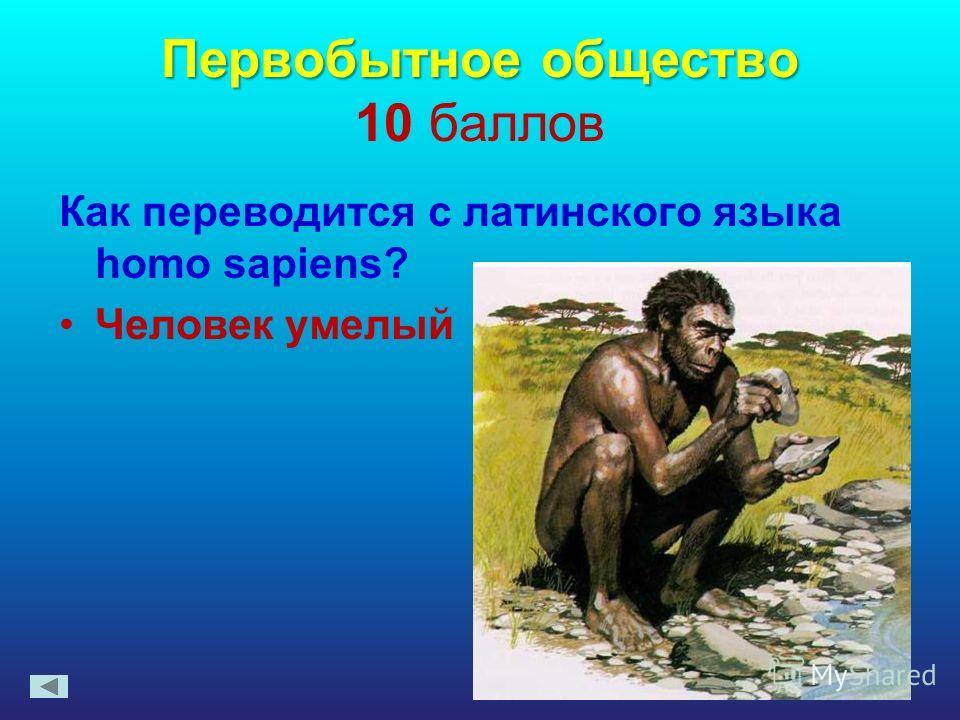 Первобытное общество Первобытное общество 10 баллов Как переводится с латинского языка homo sapiens? Человек умелый