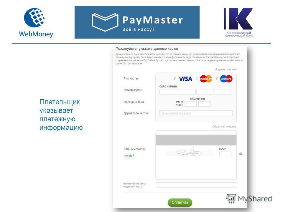 Плательщик указывает платежную информацию