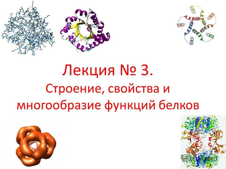 Лекция 3. Строение, свойства и многообразие функций белков