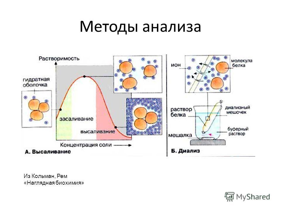 Методы анализа Из Кольман, Рем «Наглядная биохимия»