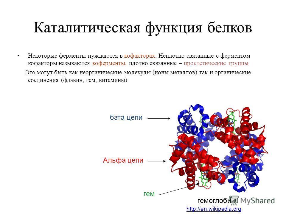 Каталитическая функция белков Некоторые ферменты нуждаются в кофакторах. Неплотно связанные с ферментом кофакторы называются коферменты, плотно связанные – простетические группы Это могут быть как неорганические молекулы (ионы металлов) так и органич
