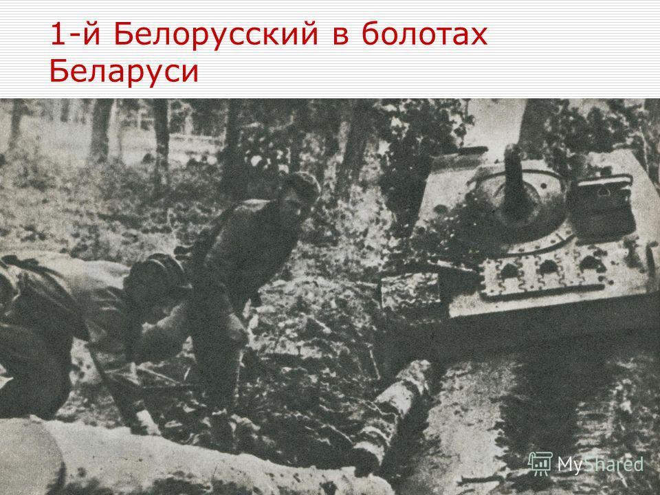 1-й Белорусский в болотах Беларуси