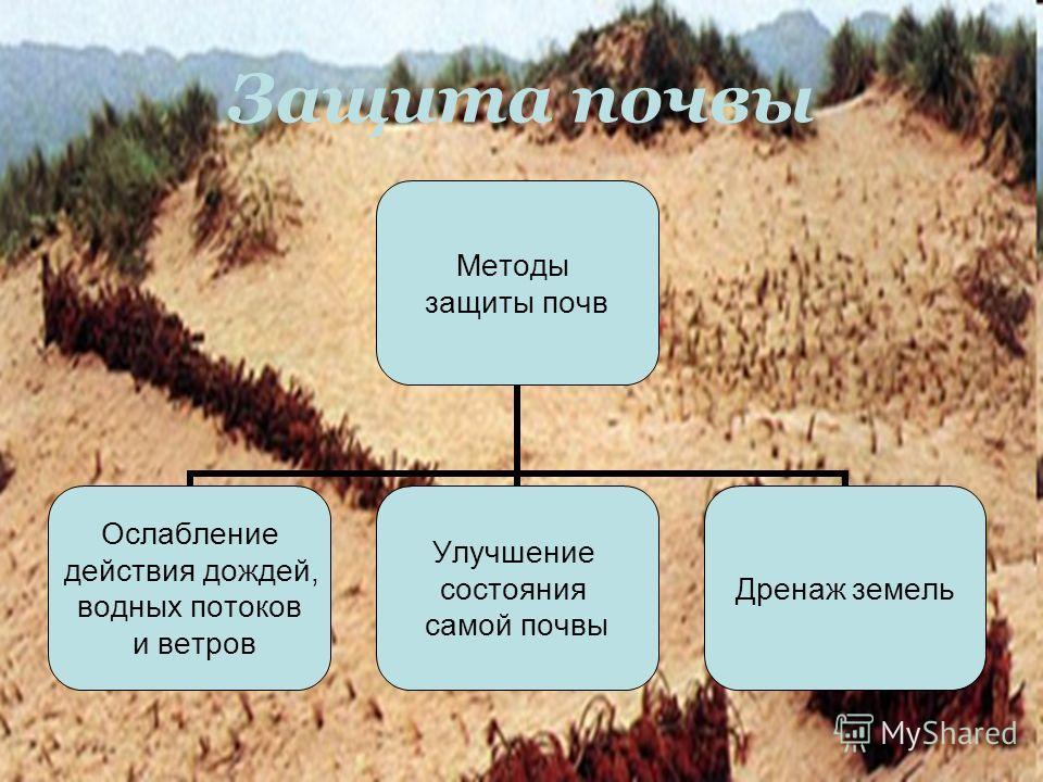 Защита почвы Методы защиты почв Ослабление действия дождей, водных потоков и ветров Улучшение состояния самой почвы Дренаж земель