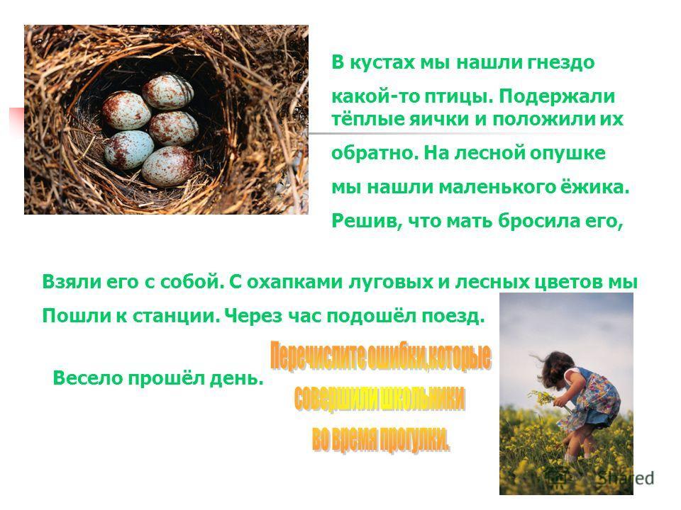 В кустах мы нашли гнездо какой-то птицы. Подержали тёплые яички и положили их обратно. На лесной опушке мы нашли маленького ёжика. Решив, что мать бросила его, Взяли его с собой. С охапками луговых и лесных цветов мы Пошли к станции. Через час подошё