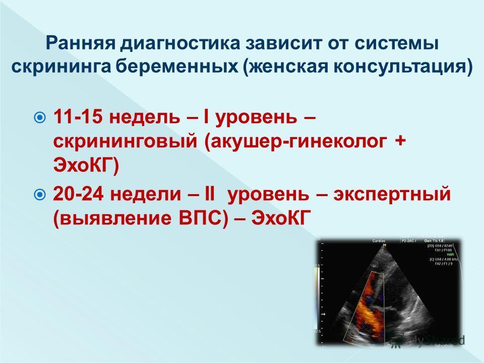 11-15 недель – I уровень – скрининговый (акушер-гинеколог + ЭхоКГ) 20-24 недели – II уровень – экспертный (выявление ВПС) – ЭхоКГ