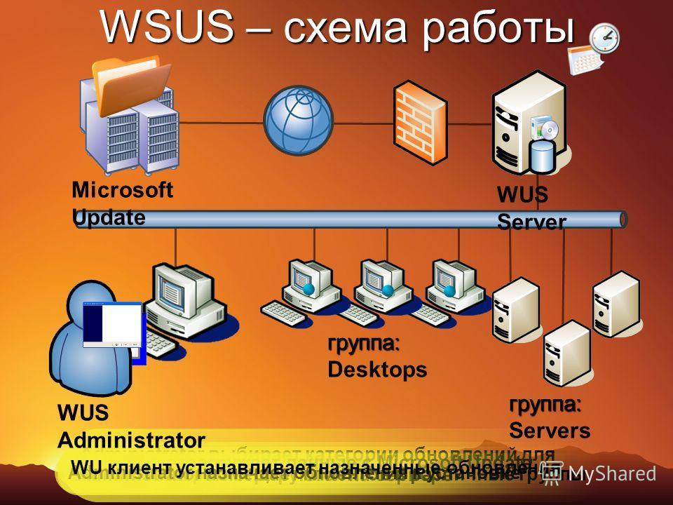 WSUS – схема работы Administrator выбирает категории обновлений для загрузки WUS Server загружает данные с Microsoft Update WU клиенты регистрируются на сервере Administrator помещает клиентов в различные группы Administrator назначает обновления к у