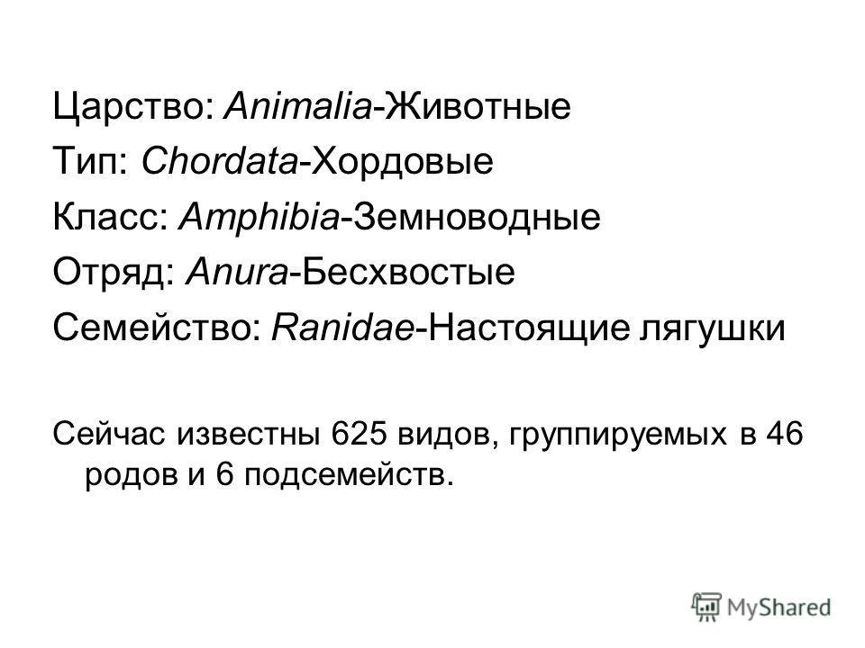 Царство: Animalia-Животные Тип: Chordata-Хордовые Класс: Amphibia-Земноводные Отряд: Anura-Бесхвостые Семейство: Ranidae-Настоящие лягушки Сейчас известны 625 видов, группируемых в 46 родов и 6 подсемейств.