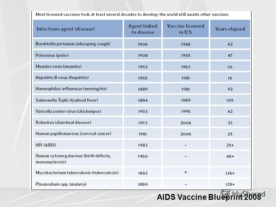 AIDS Vaccine Blueprint 2008