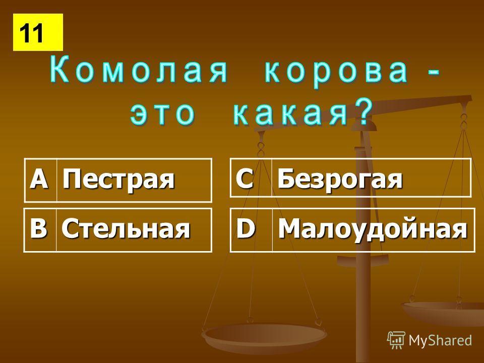 АПестрая СБезрогая ВСтельнаяDМалоудойная 11