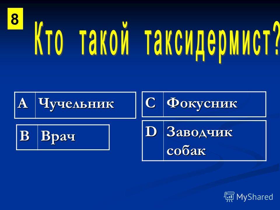 АЧучельник СФокусник ВВрач D Заводчик собак 8