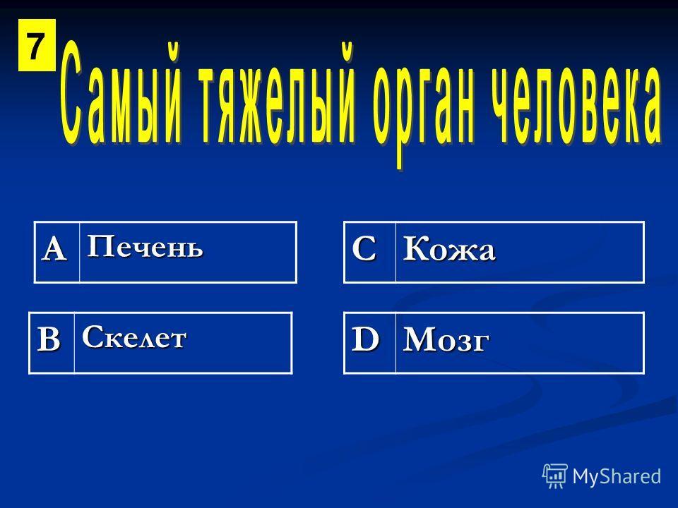 АПеченьСКожа ВСкелетDМозг 7