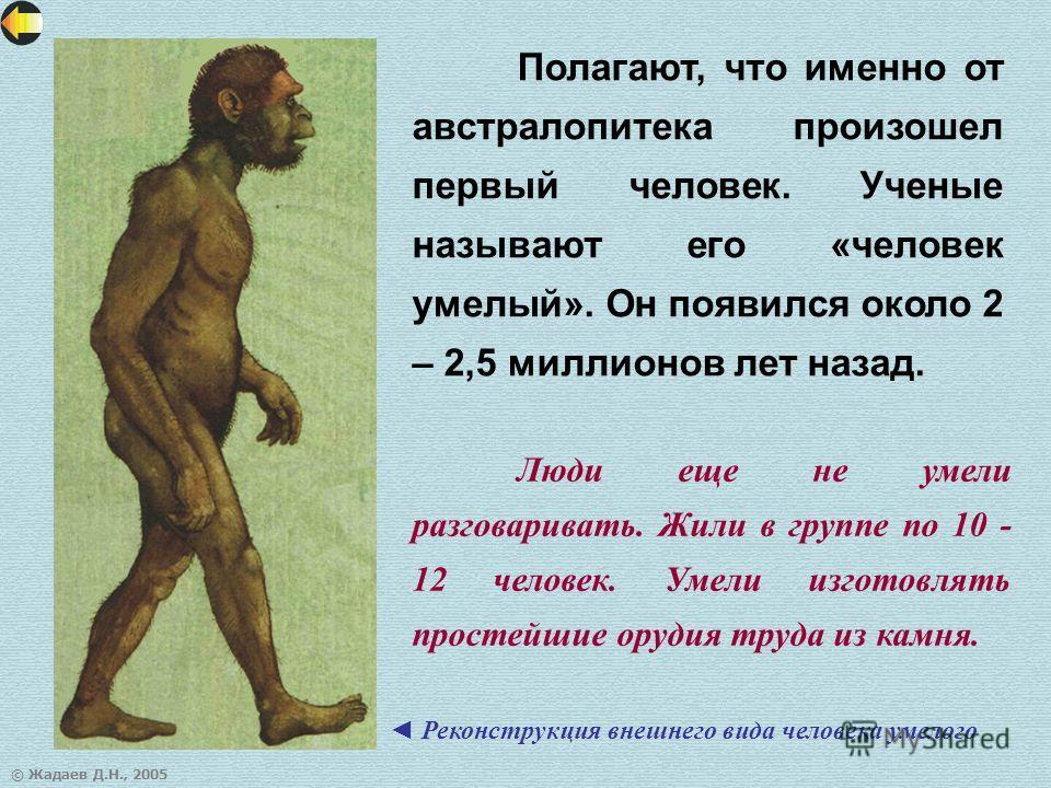 © Жадаев Д.Н., 2005 Полагают, что именно от австралопитека произошел первый человек. Ученые называют его «человек умелый». Он появился около 2 – 2,5 миллионов лет назад. Реконструкция внешнего вида человека умелого Люди еще не умели разговаривать. Жи