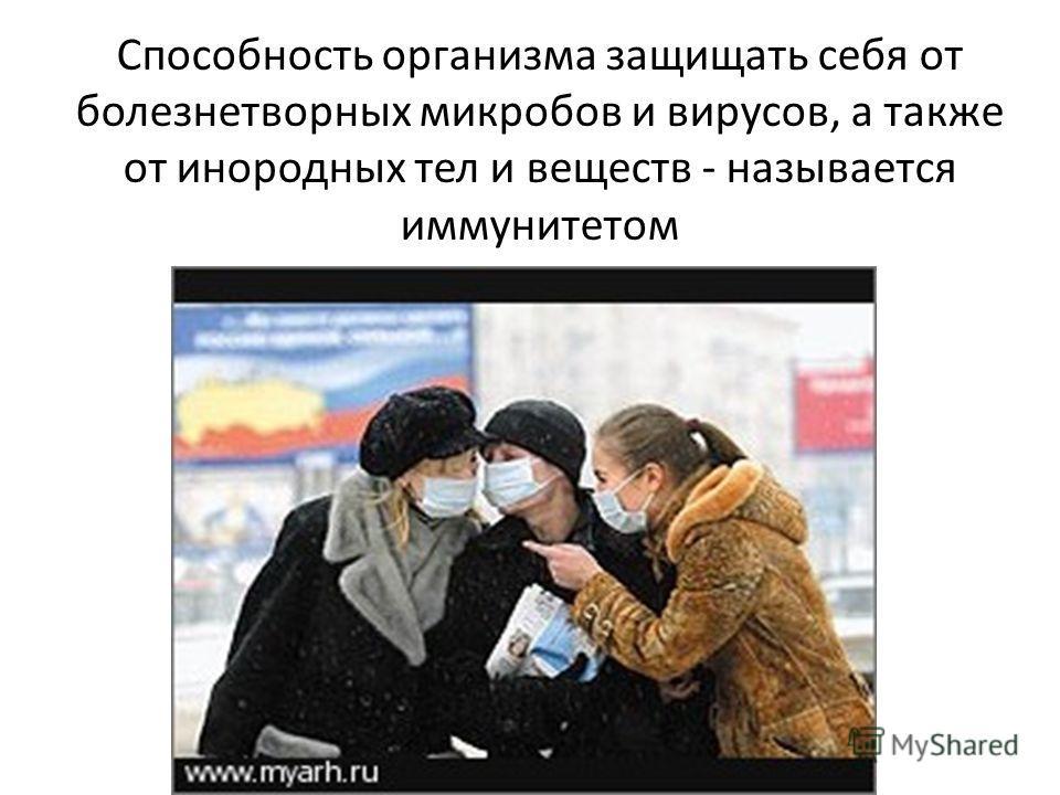 Способность организма защищать себя от болезнетворных микробов и вирусов, а также от инородных тел и веществ - называется иммунитетом
