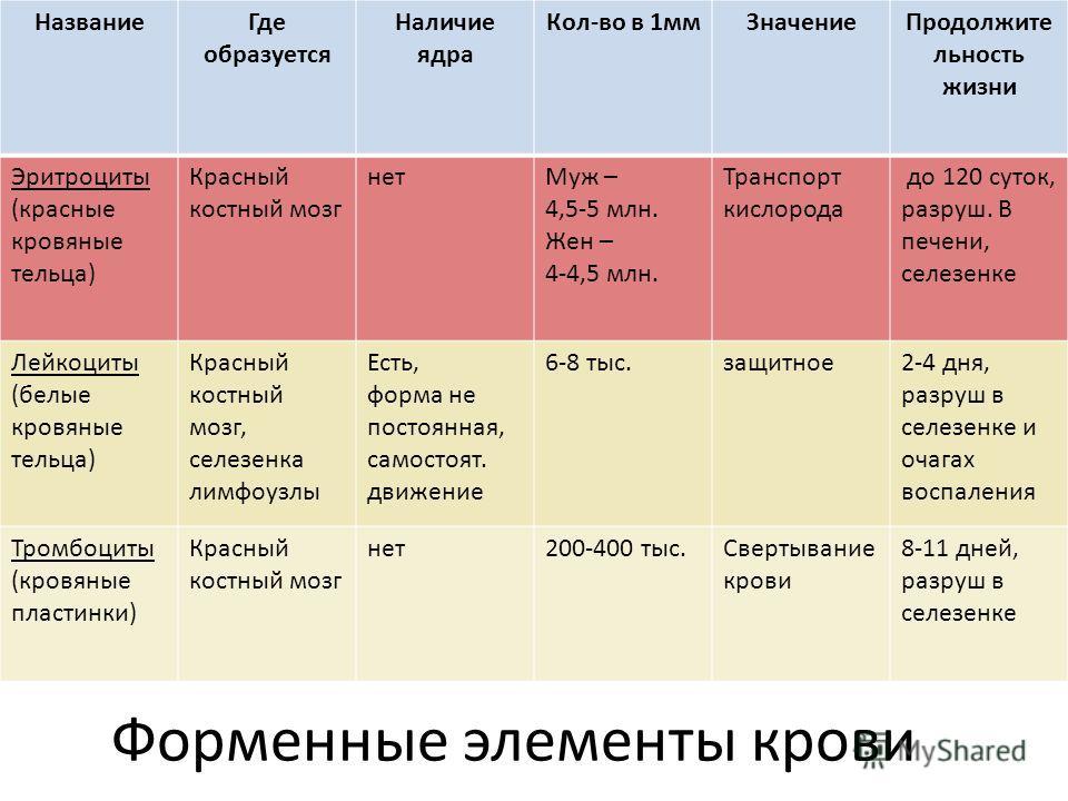 НазваниеГде образуется Наличие ядра Кол-во в 1ммЗначениеПродолжите льность жизни Эритроциты (красные кровяные тельца) Красный костный мозг нетМуж – 4,5-5 млн. Жен – 4-4,5 млн. Транспорт кислорода до 120 суток, разруш. В печени, селезенке Лейкоциты (б