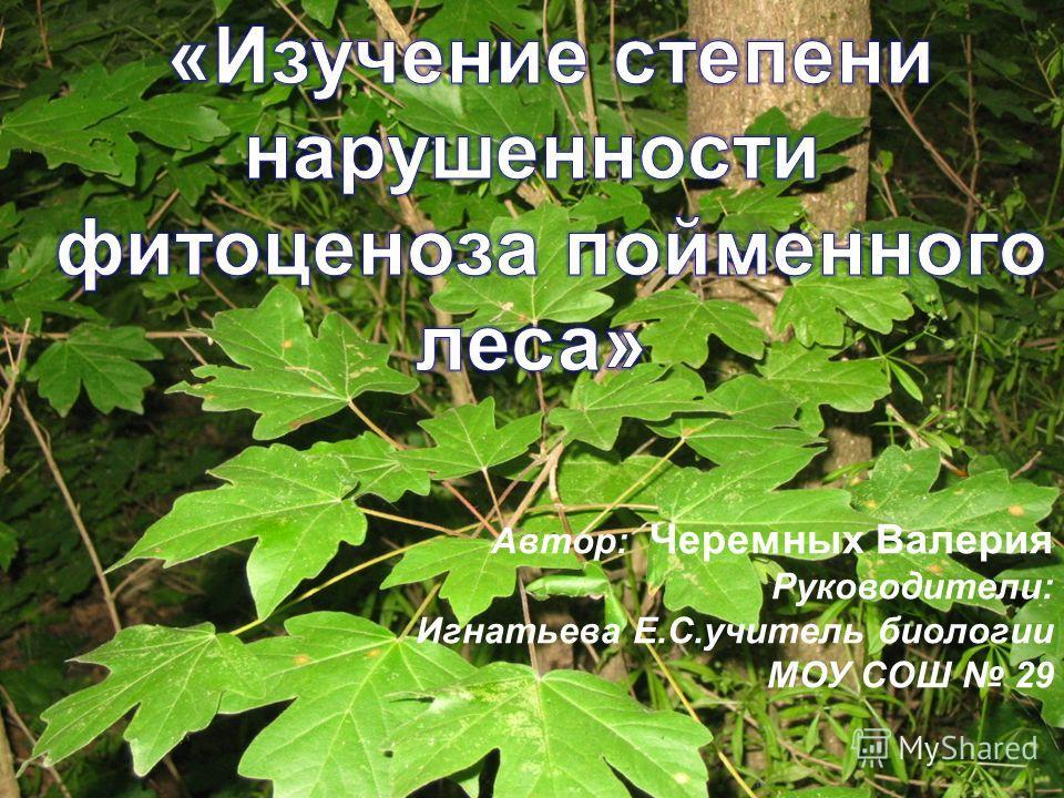 Автор: Черемных Валерия Руководители: Игнатьева Е.С.учитель биологии МОУ СОШ 29