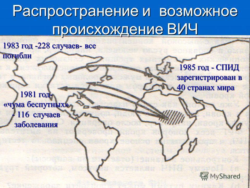Распространение и возможное происхождение ВИЧ 1985 год - СПИД зарегистрирован в 40 странах мира 1981 год- «чума беспутных» - 116 случаев заболевания 1983 год -228 случаев- все погибли