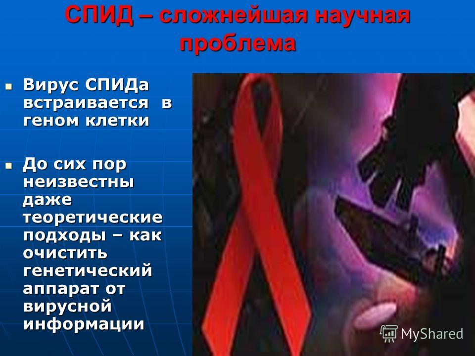 СПИД – сложнейшая научная проблема Вирус СПИДа встраивается в геном клетки Вирус СПИДа встраивается в геном клетки До сих пор неизвестны даже теоретические подходы – как очистить генетический аппарат от вирусной информации До сих пор неизвестны даже