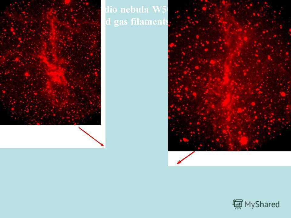 Radio nebula W50 (VLA) and gas filaments (BТА)