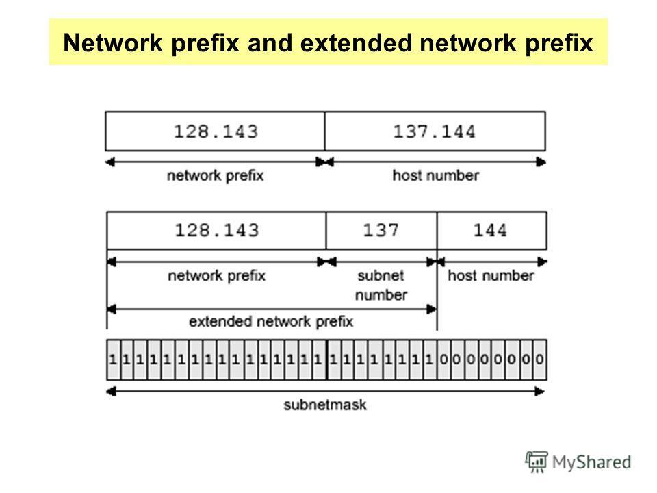 Network prefix and extended network prefix