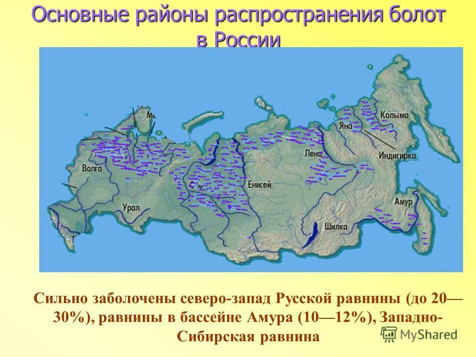 Основные районы распространения болот в России Сильно заболочены северо-запад Русской равнины (до 20 30%), равнины в бассейне Амура (1012%), Западно- Сибирская равнина