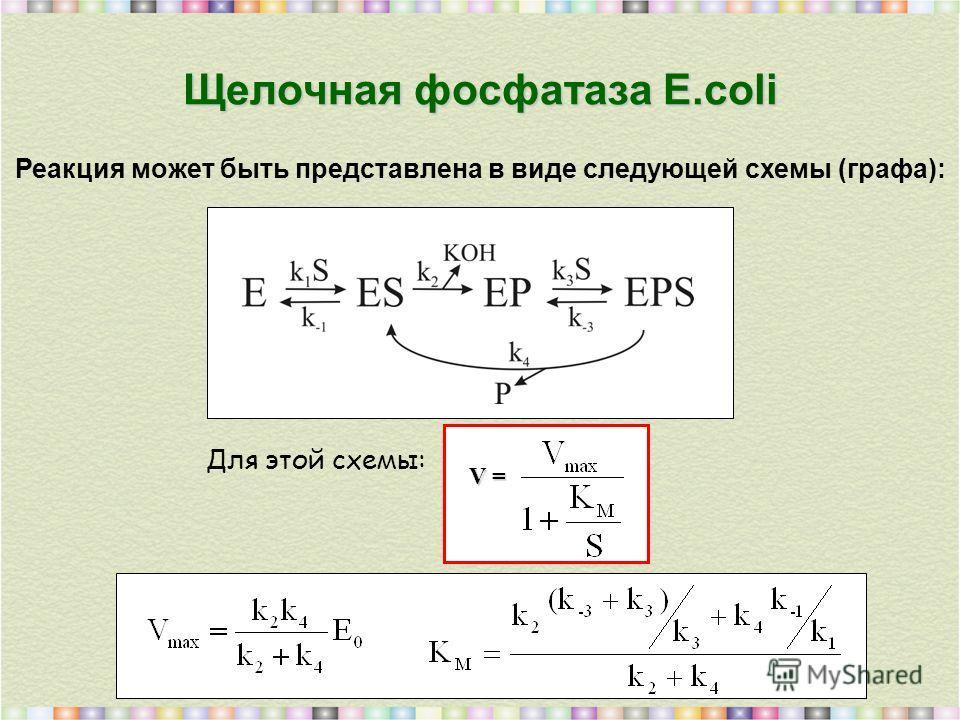 Щелочная фосфатаза E.coli Реакция может быть представлена в виде следующей схемы (графа): Для этой схемы: V =