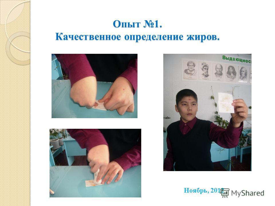 Опыт 1. Качественное определение жиров. Ноябрь, 2012