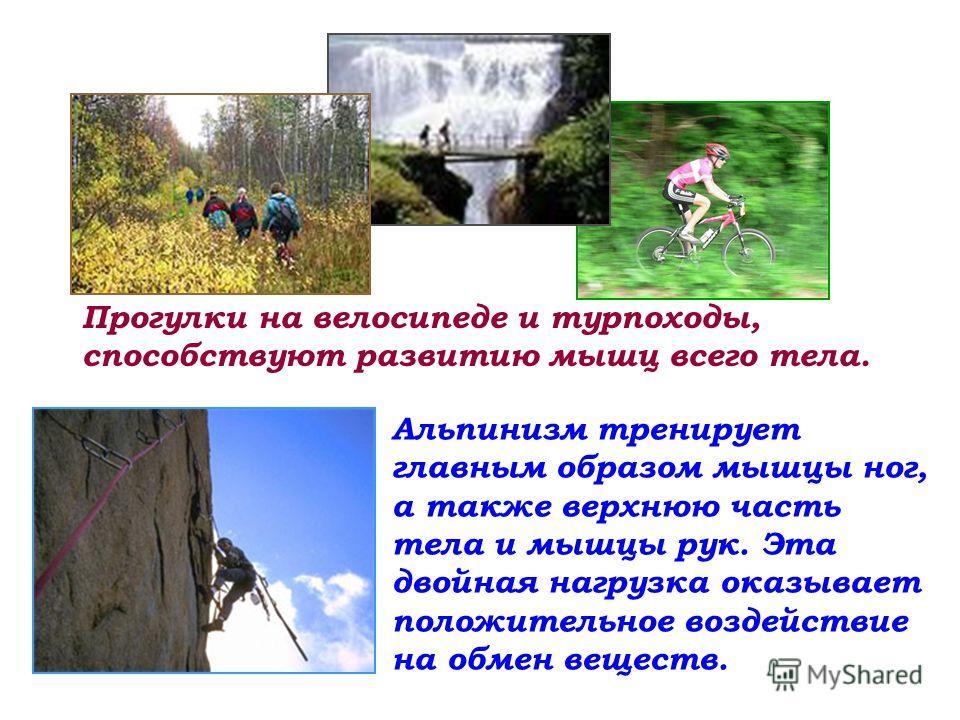 Прогулки на велосипеде и турпоходы, способствуют развитию мышц всего тела. Альпинизм тренирует главным образом мышцы ног, а также верхнюю часть тела и мышцы рук. Эта двойная нагрузка оказывает положительное воздействие на обмен веществ.
