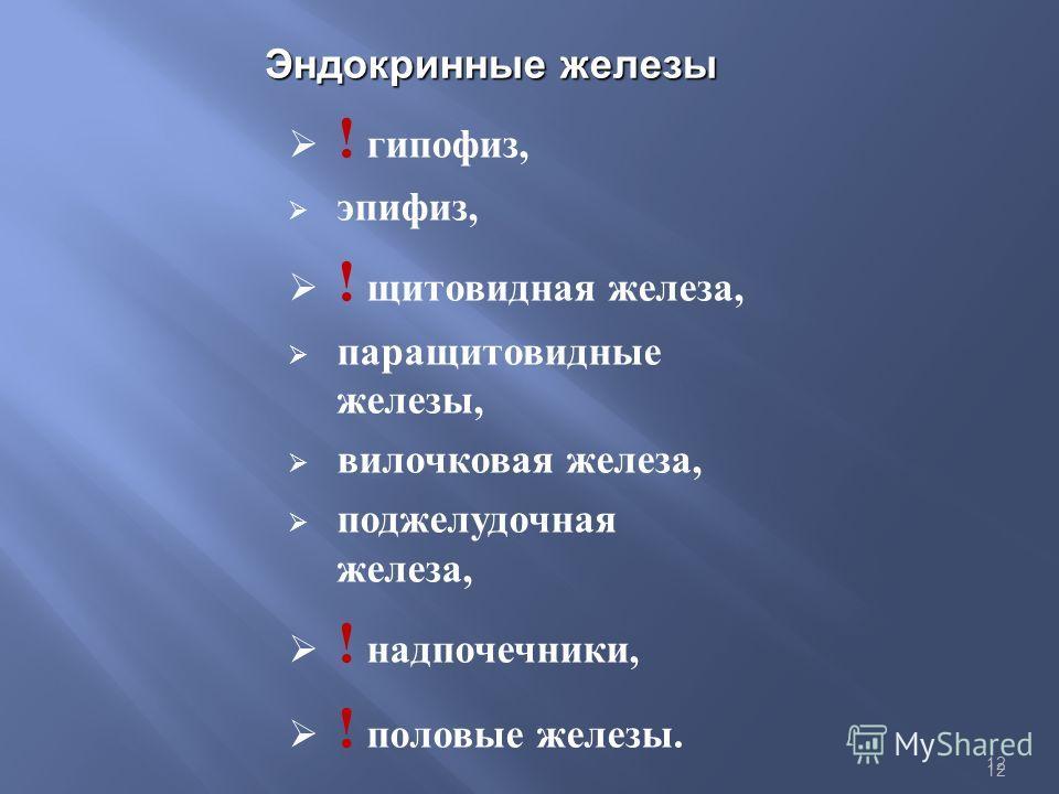 12 Эндокринные железы ! гипофиз, эпифиз, ! щитовидная железа, паращитовидные железы, вилочковая железа, поджелудочная железа, ! надпочечники, ! половые железы.