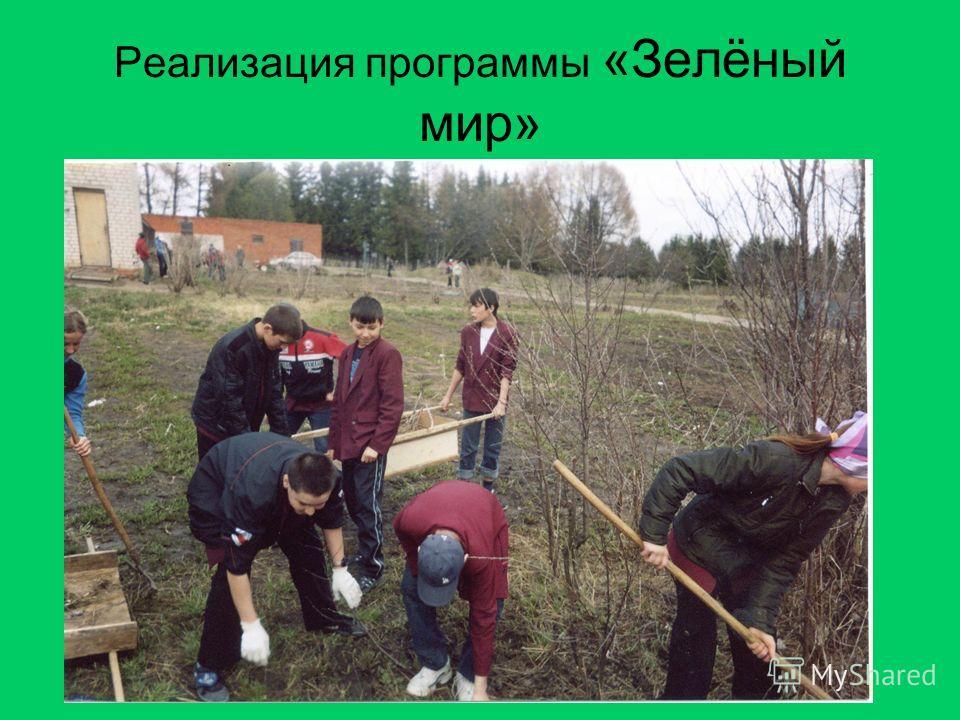Реализация программы «Зелёный мир»