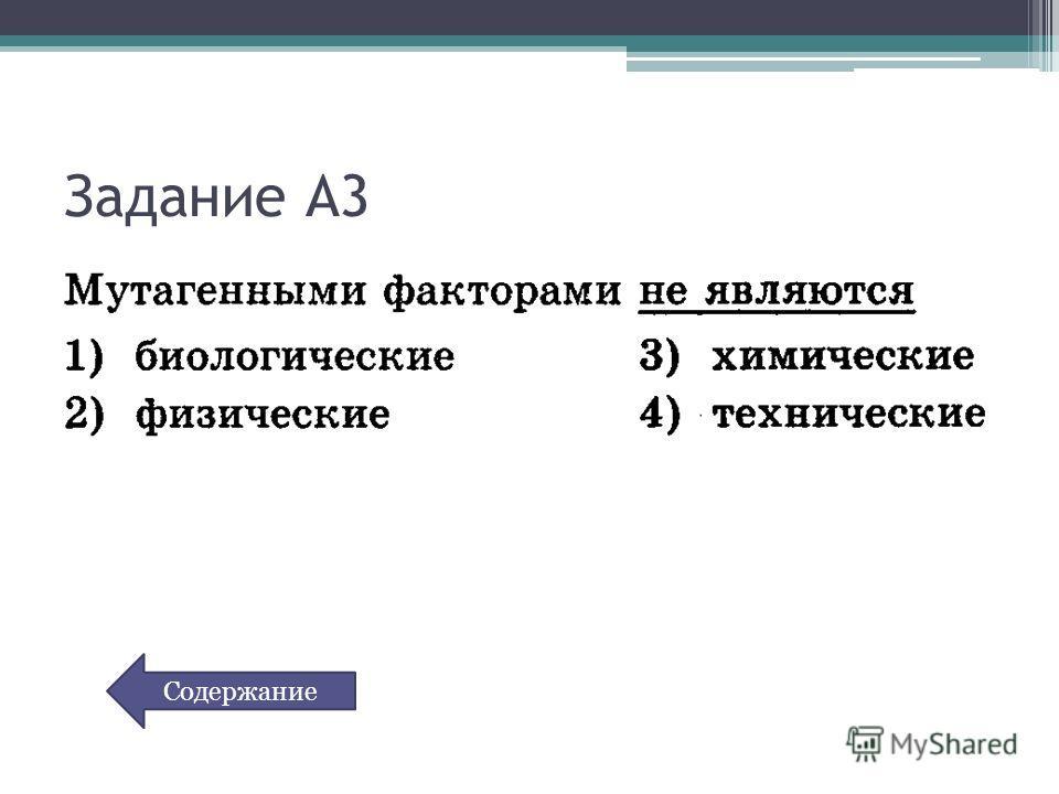 Задание А3 Содержание