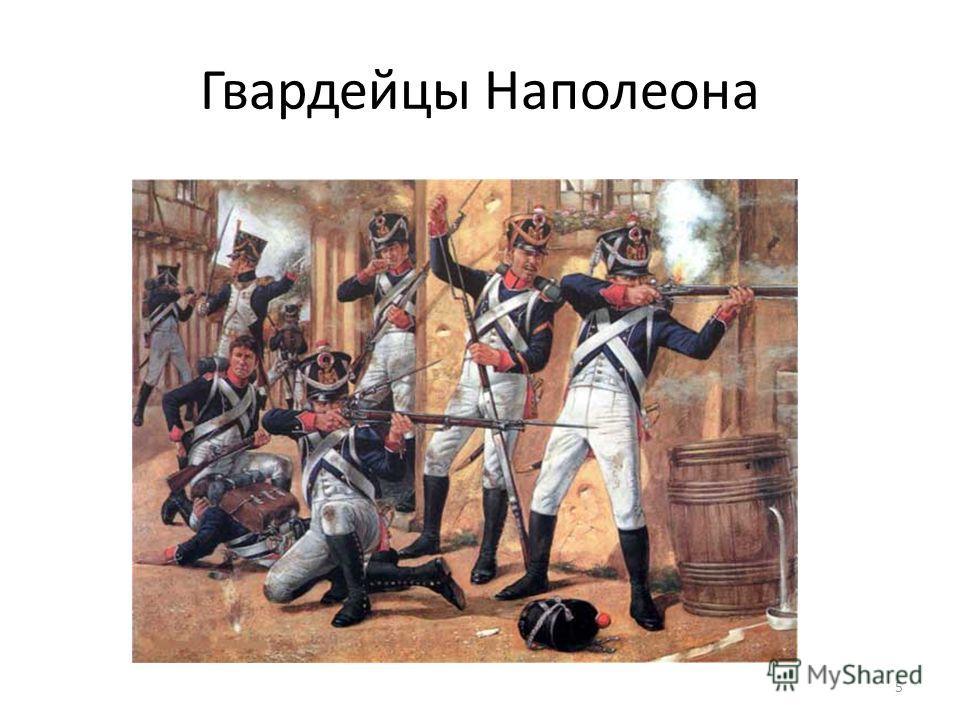 Гвардейцы Наполеона 5