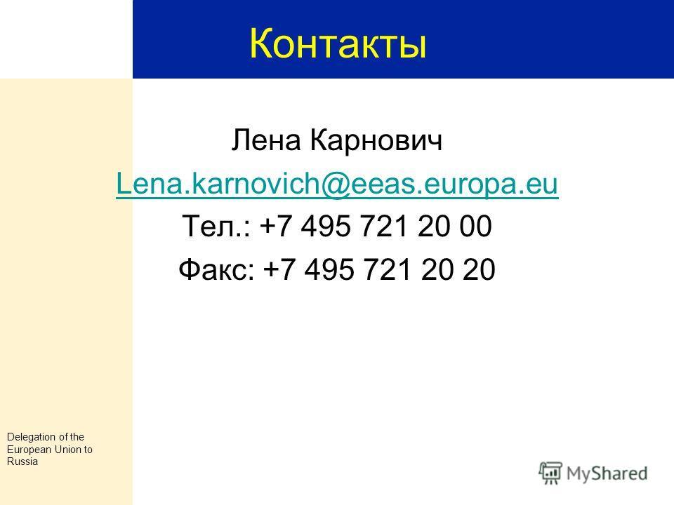 Delegation of the European Union to Russia 29 Финансовый Отчет Представительство Европейского Союза оставляет за собой право запросить дополнительную информацию, которая должна быть предоставлена в течение 30 дней с момента поступления запроса