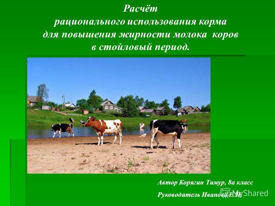 Расчёт рационального использования корма для повышения жирности молока коров в стойловый период. Автор Корягин Тимур, 8а класс Руководитель Иванова Е.П.