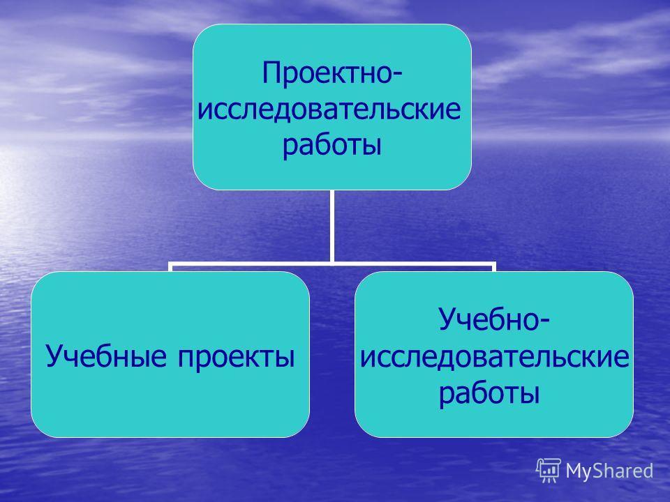 Проектно- исследовательские работы Учебные проекты Учебно- исследовательские работы