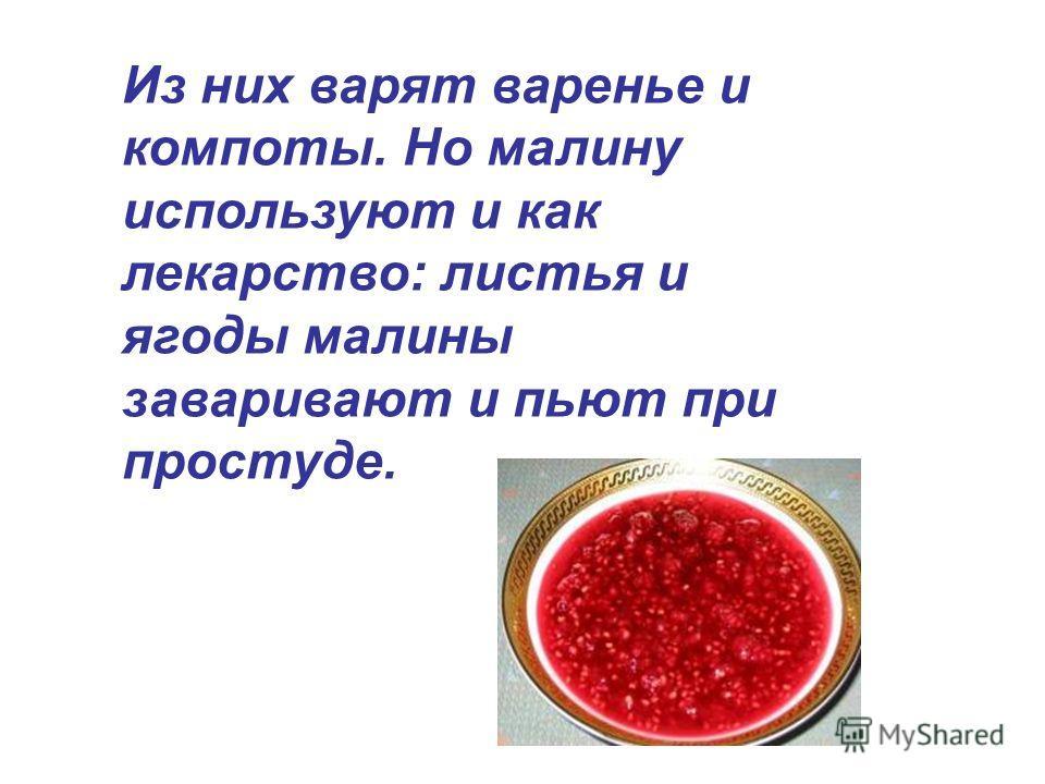Из них варят варенье и компоты. Но малину используют и как лекарство: листья и ягоды малины заваривают и пьют при простуде.