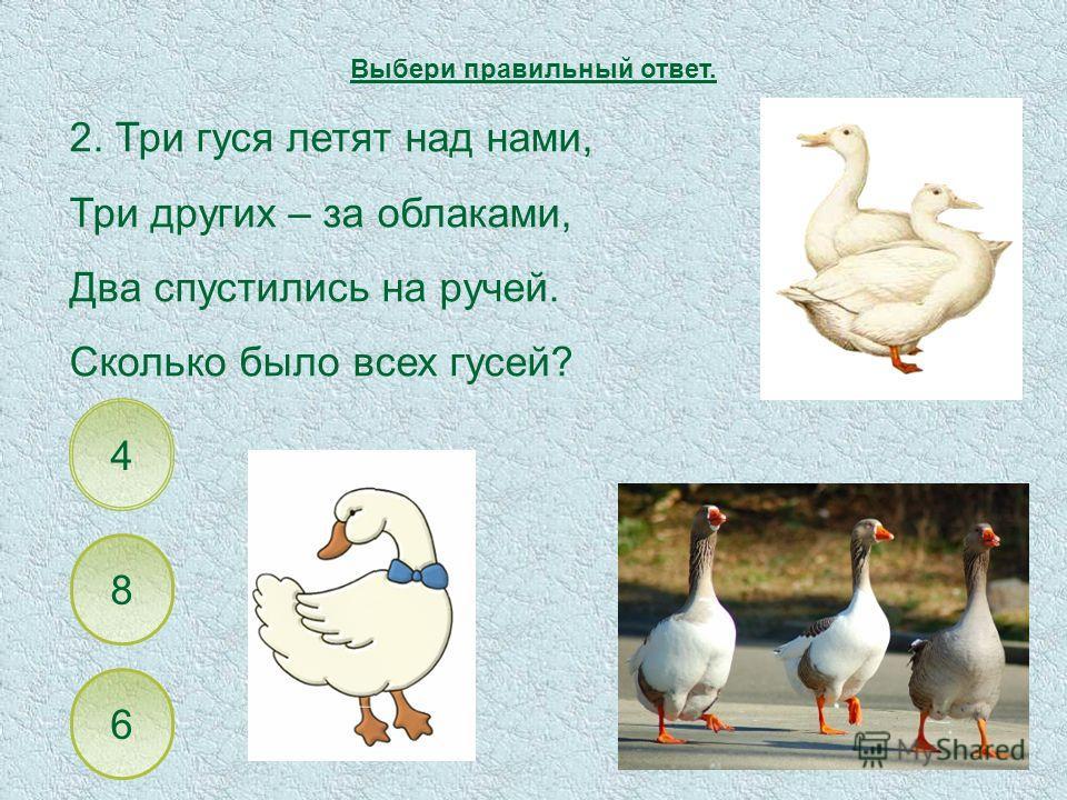 8 4 6 2. Три гуся летят над нами, Три других – за облаками, Два спустились на ручей. Сколько было всех гусей? Выбери правильный ответ.