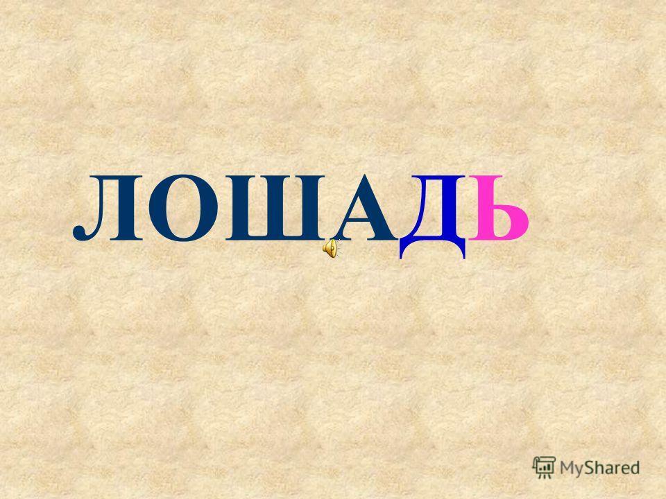 ЛОШАД