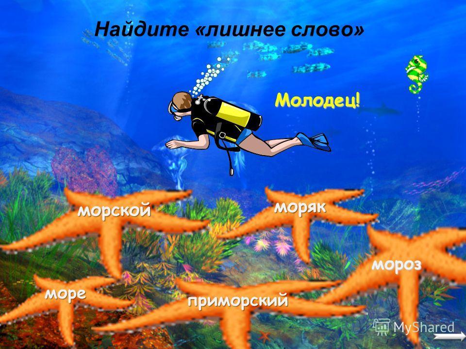 Мы отправляемся в увлекательное путешествие за сокровищами затонувшего пиратского корабля. И только тот, кто знает правила русского языка, сможет их найти.