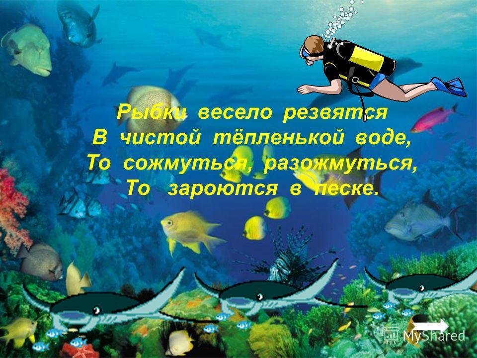 Разберите слова по составу прибрежный солёный водоросли приморский звёздочка Молодец!Молодец!