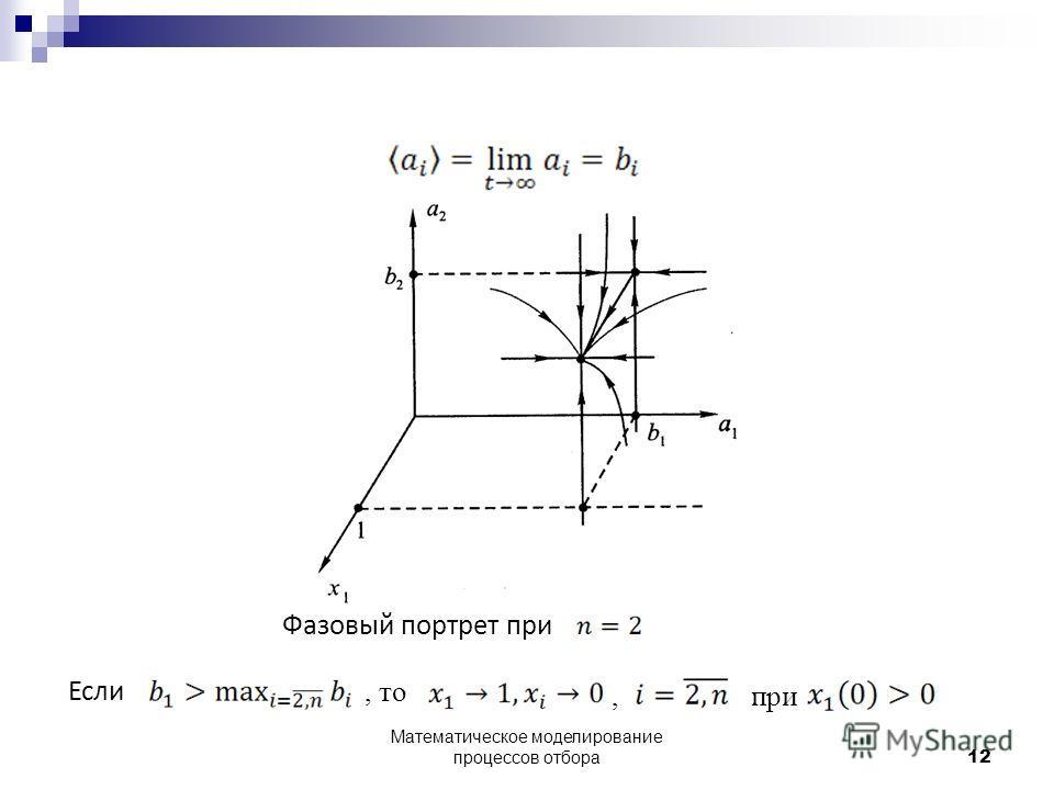 Фазовый портрет при Если, то, при 12 Математическое моделирование процессов отбора