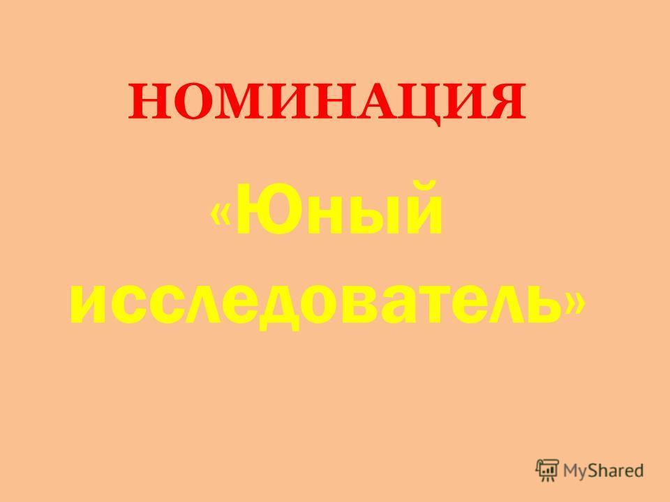 НОМИНАЦИЯ «Юный исследователь»