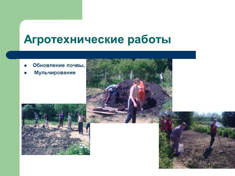 Агротехнические работы Обновление почвы, Мульчирование
