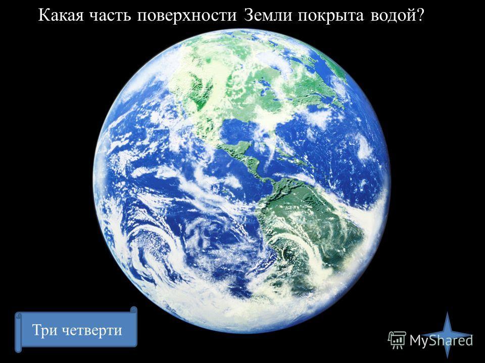 Какая часть поверхности Земли покрыта водой? Три четверти