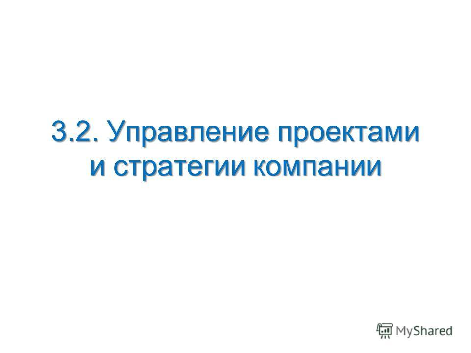 3.2. Управление проектами и стратегии компании